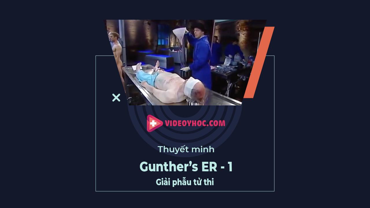 Giải phẫu tử thi - Trong phòng cấp cứu - Gunther's ER - lesson 1